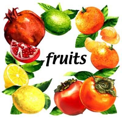 Ensemble de fruits biologiques, citron, mandarine, grenade, citron vert, kaki, aliments variés, cadre avec mise en page de texte créative, concept végétarien de mode de vie sain, isolé, illustration a
