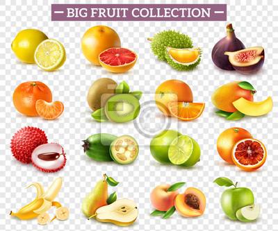Sticker Ensemble de fruits réaliste