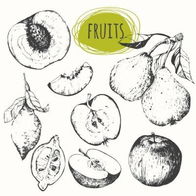 Sticker Ensemble de pomme dessinée à la main, citron, poire, pêche. Croquis de fruits.