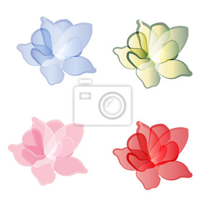 Ensemble, fleurs, pétales