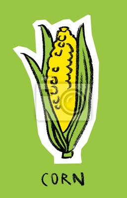 Épis de maïs sur fond vert