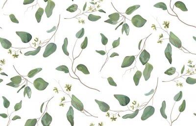 Sticker Eucalyptus arbre différent, branches naturelles de feuillage avec des feuilles vertes modèle tropical sans soudure de graines, style aquarelle. Vecteur décoratif belle illustration élégante mignonne i