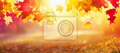 Sticker Falling Autumn Maple Leaves Natural Background
