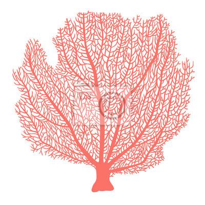 Sticker Fan coral