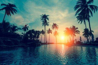 Sticker Fantastique coucher de soleil, palmiers dans la plage tropicale.