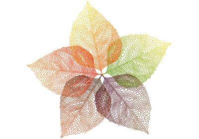 Sticker feuilles d'automne coloré, vecteur