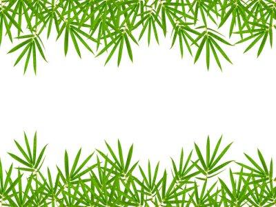 Sticker feuilles de bambou isolé sur fond blanc