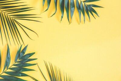 Sticker Feuilles de palmier tropical sur fond jaune. Concept de l'été. Plat poser, vue de dessus, copie espace