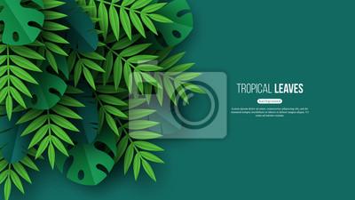 Sticker Feuilles de palmier tropicales exotiques de la jungle. Design floral d'été avec fond de couleur verte. Illustration vectorielle