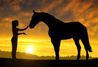 Sticker Fille avec un cheval au coucher du soleil