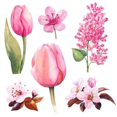 Sticker fleur aquarelle printanière sertie de tulipes et de lilas