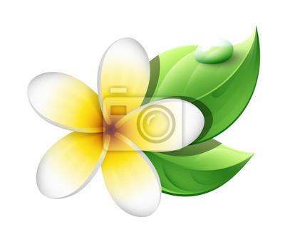 Fleur De Frangipanier Stickers Pc Portable Autocollants Murales