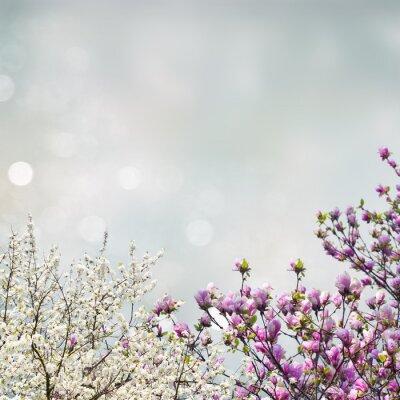Sticker Fleurir, magnolia, arbre