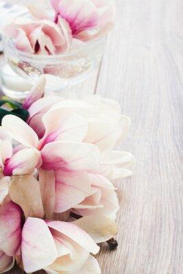 Sticker fleurs de magnolia