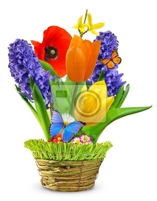 Fleurs de printemps dans un pot décoratif