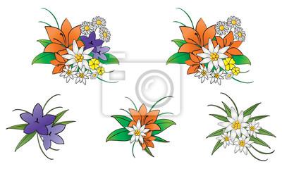 Fleurs des Dolomites