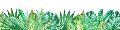 Sticker Fond avec des plantes tropicales aquarelles. Utile pour la conception de bannières, cartes, vœux, invitations et bien d'autres.