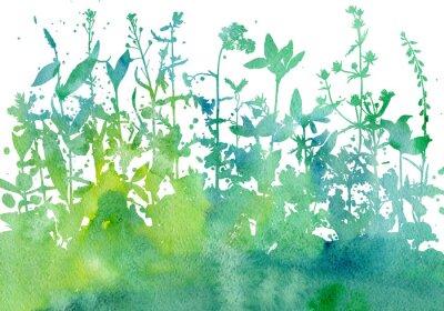 Sticker Fond avec dessin d'herbes et de fleurs