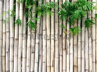 Sticker Fond de bambou naturel
