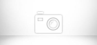 Sticker fond de studio blanc et gris