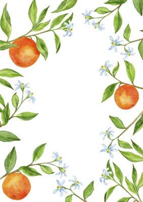 Sticker Fond, fruit, arbre, branches, fleurs, feuilles, oranges