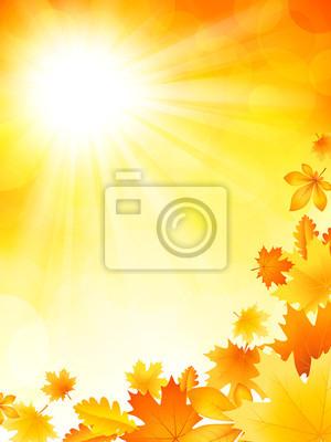 Fond lumineux d'automne
