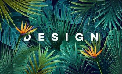 Sticker Fond tropicale lumineux avec des plantes de jungle. Modèle exotique avec feuilles de palmier.
