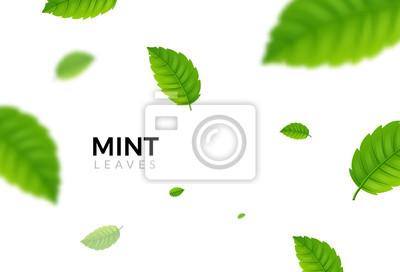 Sticker Fond vert feuille de menthe eco. Illustration de l'usine de conception de modèle de menthe écologie