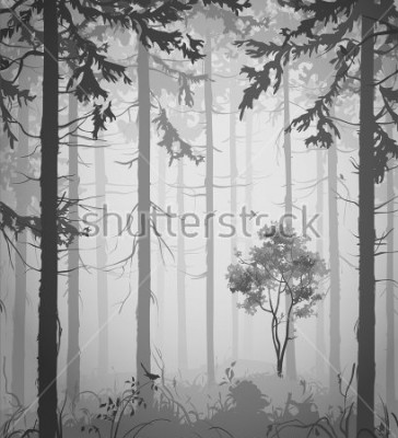 Sticker forest air landscape with birds, black and white, vector illustration