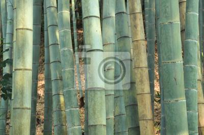 Forêt de bambous stickers pc portable • autocollants murales droite ...