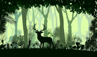 Sticker Forêt, fond, sauvage, cerf, Arbres