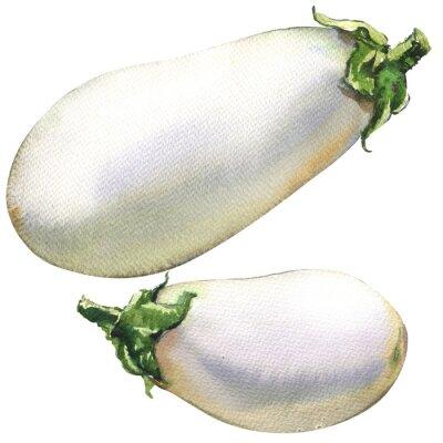 Frais, aubergines, isolé, aquarelle, Illustration, blanc