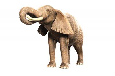 Sticker Freigestellter Elefant mit erhobenem Rüssel (gerandertes Bild)