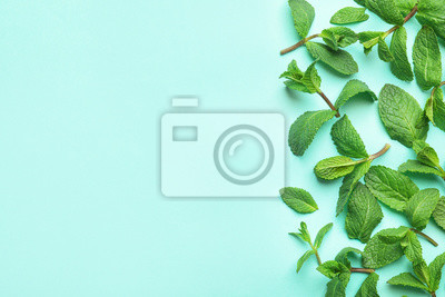 Sticker Fresh green mint leaves on blue background, flat lay. Space for text