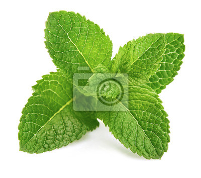 Sticker Fresh leaf mint green herbs ingredient for mojito drink, isolated on white background.