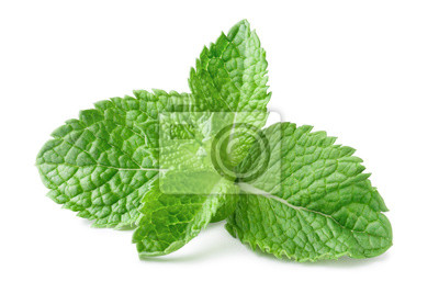 Sticker Fresh mint leaves, isolated on white background