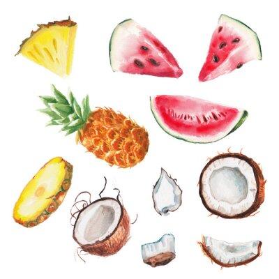 Sticker fruits aquarelle d'été réglés