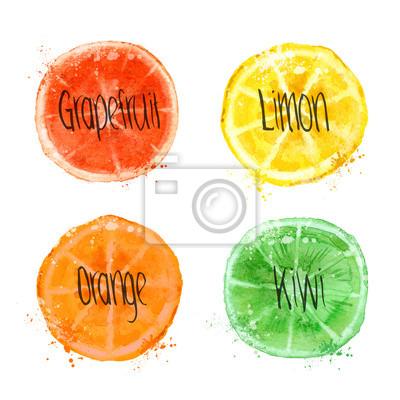 Fruits. Format vectoriel