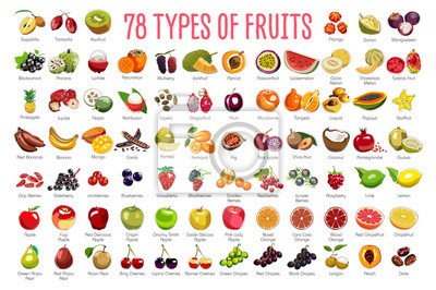 Sticker Fruits Icons – A huge set includes 78 types of colorful fruits with names. The icons were drawn in free hand and have thin gray line. Can be used for supermarket categories, for learning, as a poster.