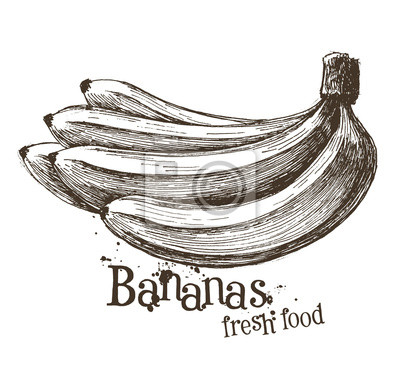 fruits ou l'icône de la nourriture.