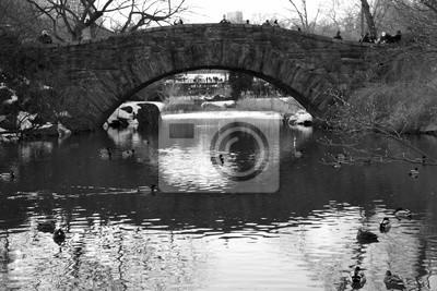 Gapstow pont sur le lac et les canards en noir et blanc