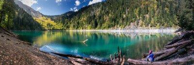 Sticker Girl, admirer, scénique, vue, montagnes, Lac, Ritsa, Réserve, Abkhazie
