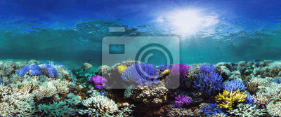 Sticker Glowing coral reef