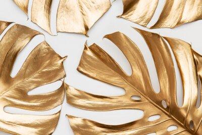 Sticker Golden monstera leaves on white background