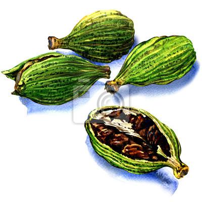graines de cardamome sur un fond blanc