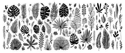 Sticker grand ensemble d'éléments de doodle noir. feuilles tropicales exotiques sur fond blanc. Illustration botanique de vecteur Grands éléments de conception pour cartes de félicitation, bannières et autres