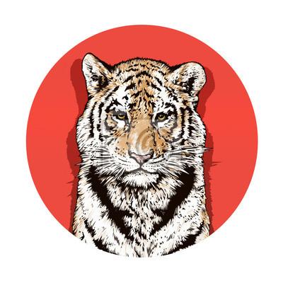 Graphique couleur dessin d'un tigre du Bengale. La faune. Gros chat