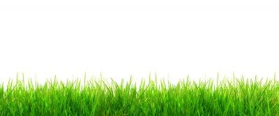 Sticker Gras Panorama