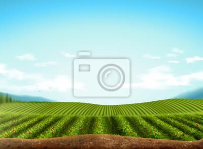 Sticker Green field background