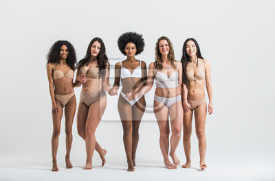 Sticker Group of women with different body and ethnicity posing together to show the woman power and strength. Curvy and skinny kind of female body concept